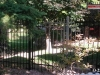 3 Rail Ornamental Fence