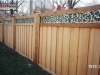 Ivy Topped Privacy Fence
